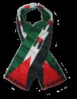 Palestina en lucha