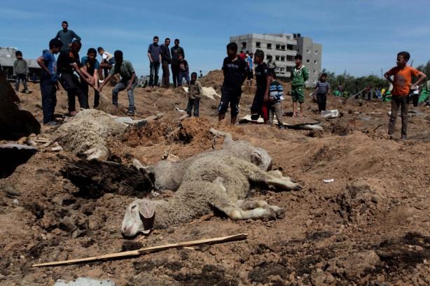 Palestinos inspeccionan el lugar de un ataque aéreo en la parte central de la Franja de Gaza, el 21 de abril. Siete cohetes diprados desde Gaza cayeron al sur de Israel durante la festividad de la pascua judía; el ejército israelí respondió con ataques aéreos, dijo un funcionario, en la primera confrontación de esta magnitud en semanas. Israel dijo que susa ataques aéreos golpearon dos campos xde entrenamiento dirigidos por Hamas. (Ashraf Amra / APA images)