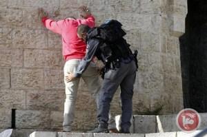 Revisión de palestino
